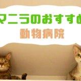 【フィリピン・マニラ】のおすすめ動物病院・3選!